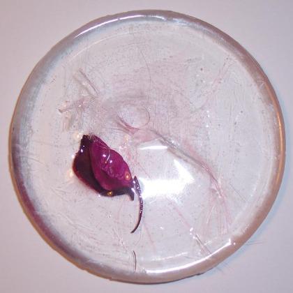 poussiere-vegetale-rose-et-ruban-1