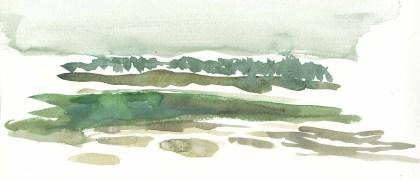 plage-dalgue-et-pins