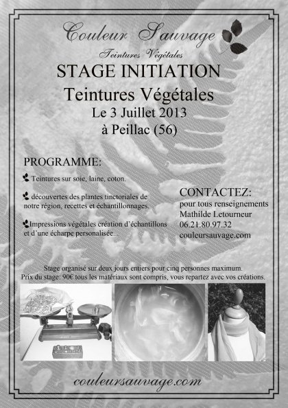 affiche stage2013 plantes locales