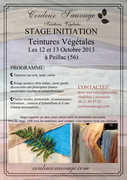 affiche stage octobre 2013